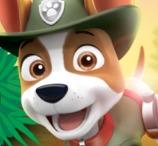 Paw Patrol Tracker's Jungle Rescue