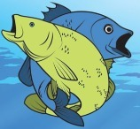 Friendly Fish Coloring