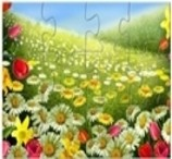 Flores e Quebra-Cabeças