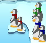 Pinguins numa Fria