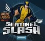 Sentinel Slash