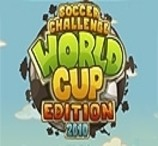 Soccer Challenge World Cup 2010