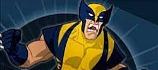 Jogos do Wolverine